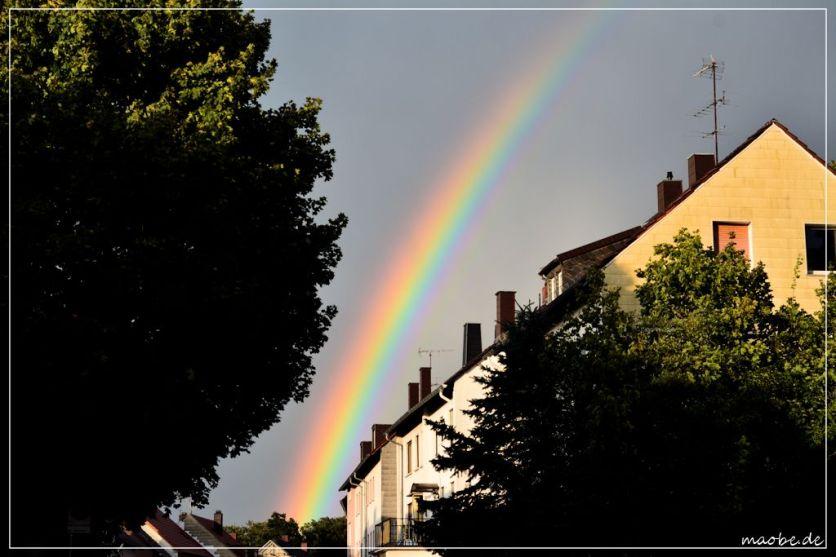 Regenbogen 19. August 2014