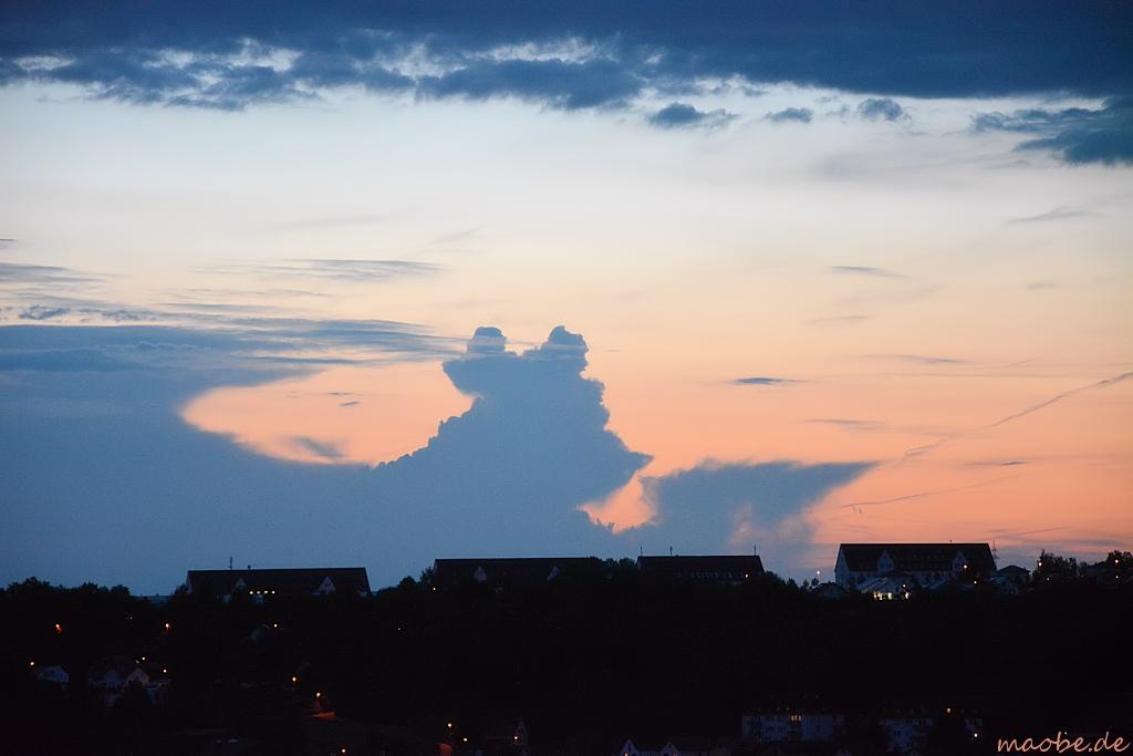 Der Wolkenbär liest das Abendblatt